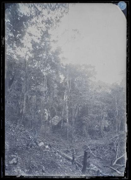 Palenque. Petit rancho dans la forêt auprès des ruines