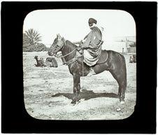 Cavalier arabe et deux chameaux au repos