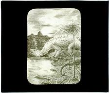 Ablantosaure (40000 kg) saurien à pieds de lézard (herbivore)