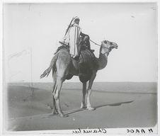 Maroc. Chamelier