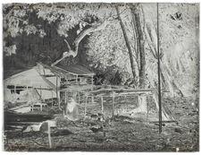 Case et séchoir à tripang dans le village Selo
