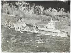 Eléphants employés au travail du bois