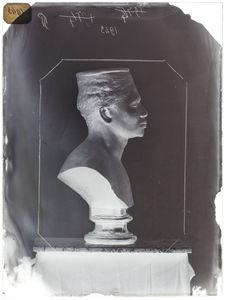 Buste : Manyosi. chef cafre de la tribu des Zulus, profil