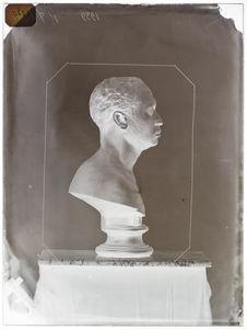 Buste : Umabonwana, profil