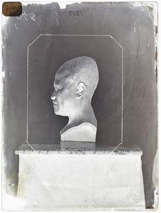 Buste : Hawaïen présentant la déformation artificielle du crâne