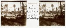 Puits à bascule dans les jardins de Tabelkoza