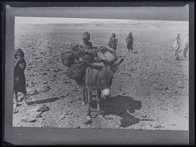 Famille téda en déplacement sur le Tarso