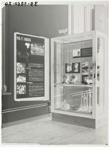"""Panneau et vitrine """"Peul & Haoussa&quot"""