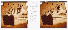Louxor. Allée de béliers du premier pylône temple d'Amon