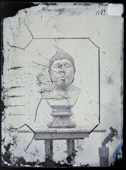 Buste : Femme Botocudo, Brésil. Buste n°1123. Face