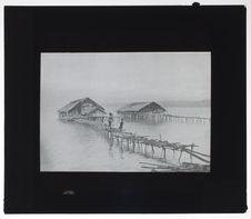 Habitation lacustre