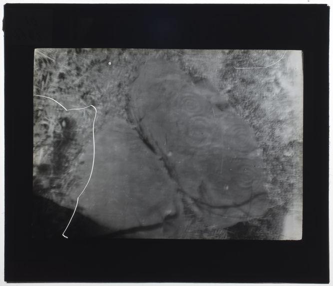 Nouvelle-Calédonie [pétroglyphes]