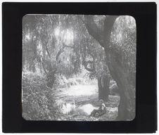 Bords de la rivière Chillan, près de Chillan