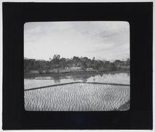 Village Muong de Xom-Gui