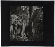 Le Temple de Prah-Khan envahi par la forêt