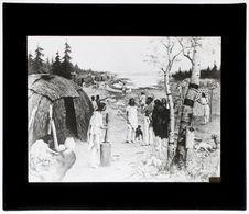 Civilisation du bouleau [dessin]