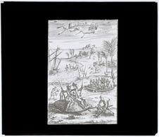 Tortues géantes de l'île Maurice [gravure]