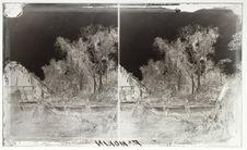 Sans titre [trois enfants s'appuyant sur un tronc d'arbre]