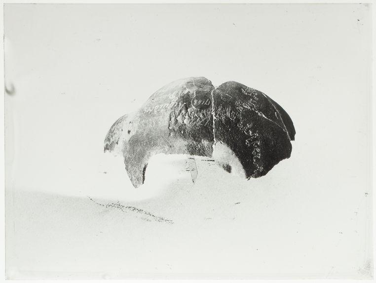 Crâne 17148 du Musée de l'Homme
