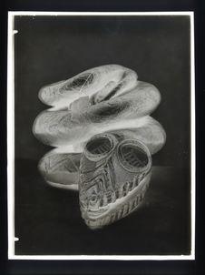 Sans titre [serpent]